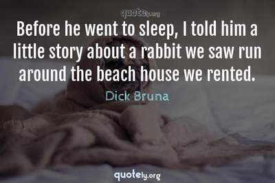 Photo Quote of Before he went to sleep, I told him a little story about a rabbit we saw run around the beach house we rented.