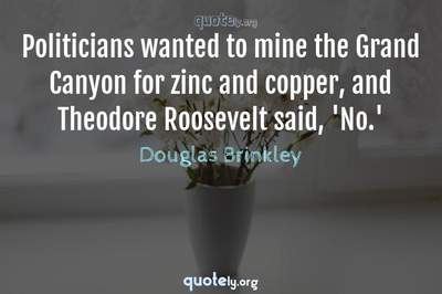 Photo Quote of Politicians wanted to mine the Grand Canyon for zinc and copper, and Theodore Roosevelt said, 'No.'