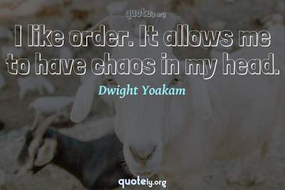 Photo Quote of I like order. It allows me to have chaos in my head.