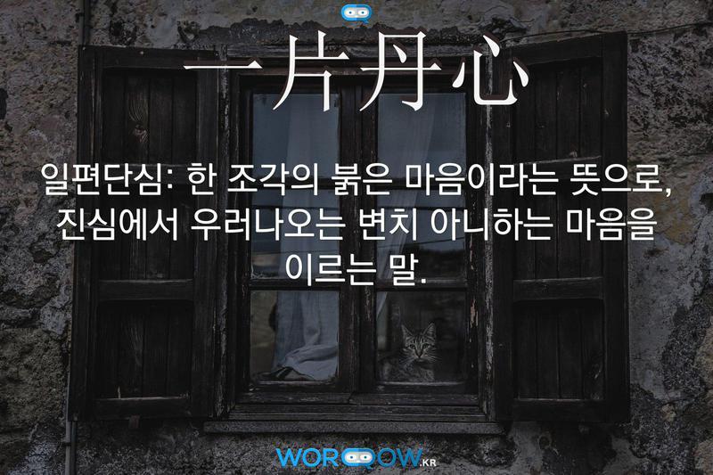 一片丹心(일편단심): 한 조각의 붉은 마음이라는 뜻으로, 진심에서 우러나오는 변치 아니하는 마음을 이르는 말.