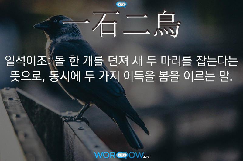 一石二鳥(일석이조): 돌 한 개를 던져 새 두 마리를 잡는다는 뜻으로, 동시에 두 가지 이득을 봄을 이르는 말.