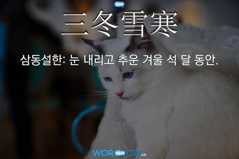 三冬雪寒(삼동설한): 눈 내리고 추운 겨울 석 달 동안.
