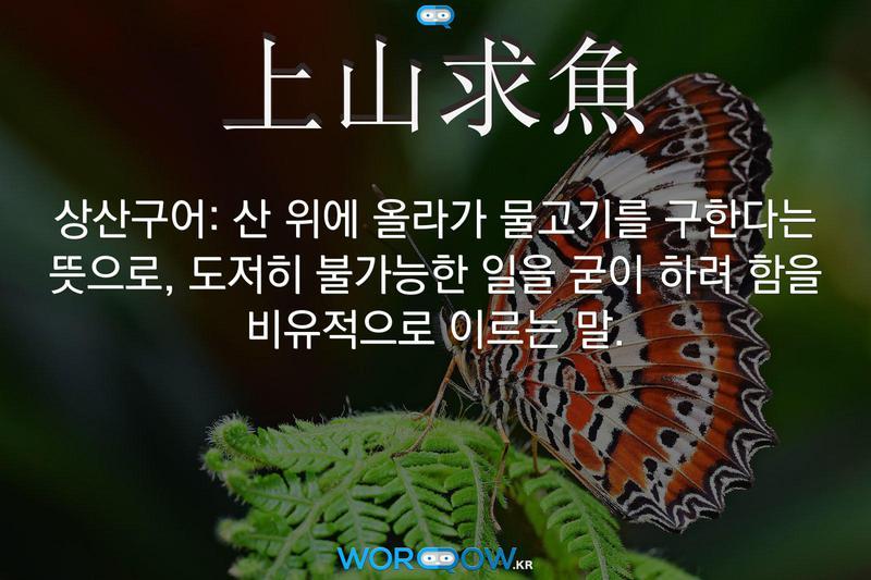上山求魚(상산구어): 산 위에 올라가 물고기를 구한다는 뜻으로, 도저히 불가능한 일을 굳이 하려 함을 비유적으로 이르는 말.