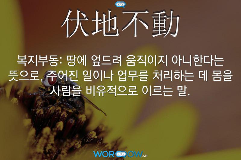 伏地不動(복지부동)의 의미: 땅에 엎드려 움직이지 아니한다는 뜻으로, 주어진 일이나 업무를 처리하는 데 몸을 사림을 비유적으로 이르는 말.