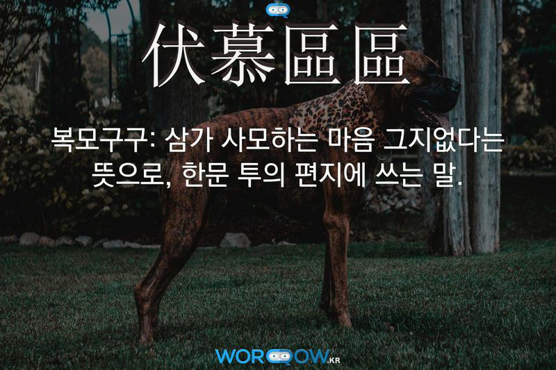 伏慕區區(복모구구): 삼가 사모하는 마음 그지없다는 뜻으로, 한문 투의 편지에 쓰는 말.