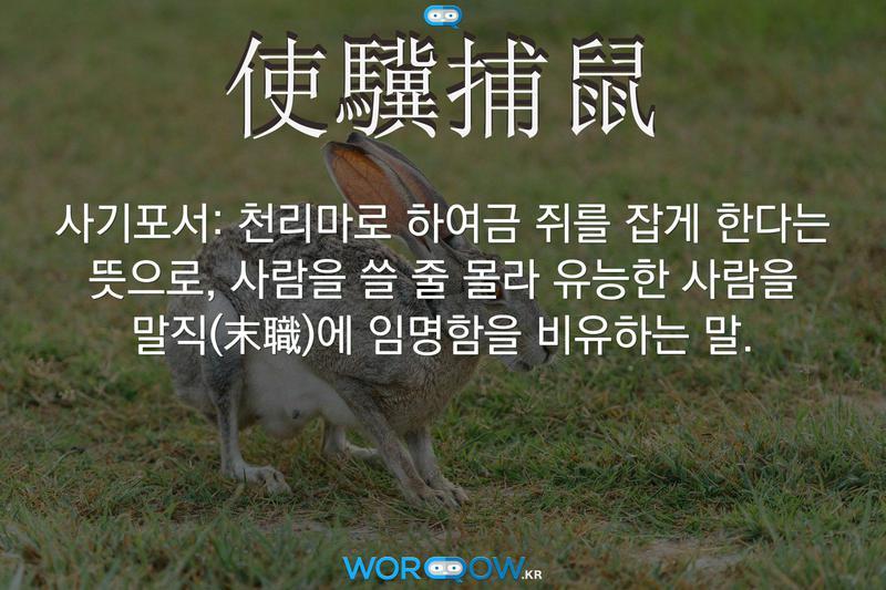 使驥捕鼠(사기포서): 천리마로 하여금 쥐를 잡게 한다는 뜻으로, 사람을 쓸 줄 몰라 유능한 사람을 말직(末職)에 임명함을 비유하는 말.