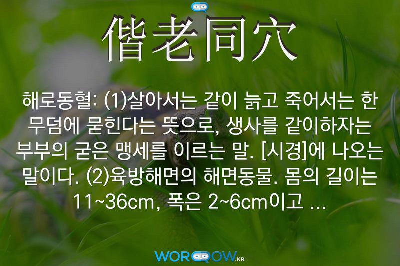 偕老同穴(해로동혈): (1)살아서는 같이 늙고 죽어서는 한 무덤에 묻힌다는 뜻으로, 생사를 같이하자는 부부의 굳은 맹세를 이르는 말. ≪시경≫에 나오는 말이다. (2)육방해면의 해면동물. 몸의 길이는 11~36cm, 폭은 2~6cm이고 수세미와 비슷한 둥근 통 모양이다. 대한 해협, 일본 근해의 깊은 바다에 산다.
