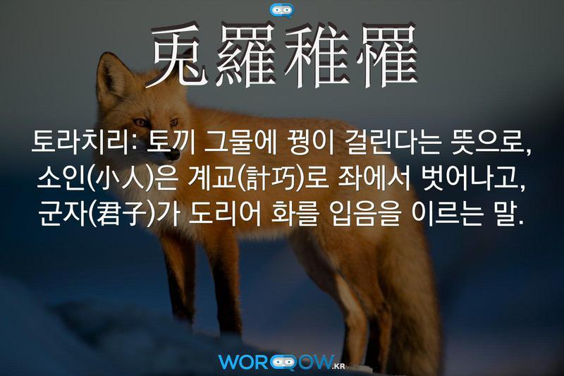 兎羅稚罹(토라치리): 토끼 그물에 꿩이 걸린다는 뜻으로, 소인(小人)은 계교(計巧)로 좌에서 벗어나고, 군자(君子)가 도리어 화를 입음을 이르는 말.
