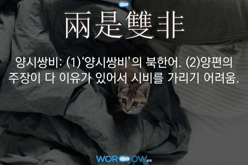 兩是雙非(양시쌍비): (1)'양시쌍비'의 북한어. (2)양편의 주장이 다 이유가 있어서 시비를 가리기 어려움.