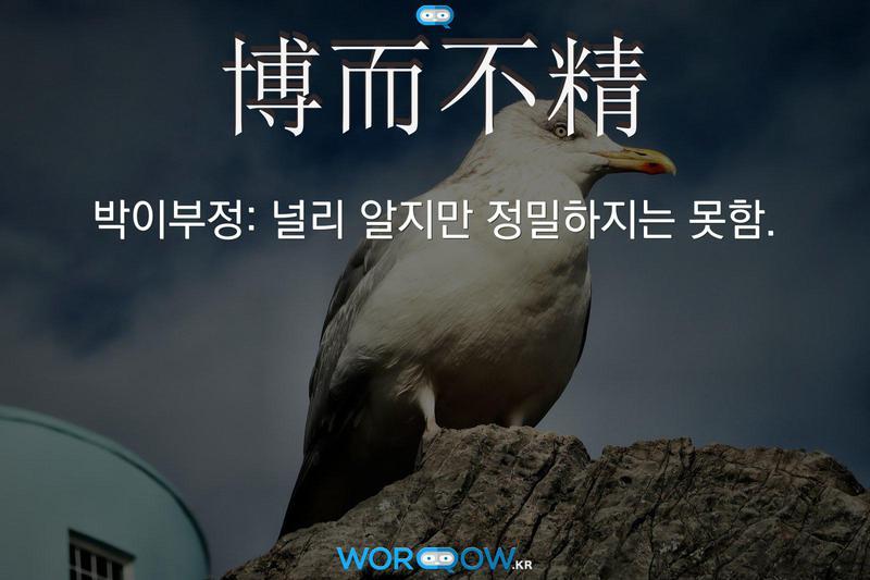 博而不精(박이부정)의 의미: 널리 알지만 정밀하지는 못함.