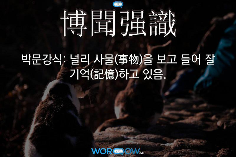 博聞强識(박문강식): 널리 사물(事物)을 보고 들어 잘 기억(記憶)하고 있음.