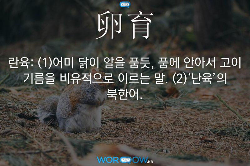 卵育(란육): (1)어미 닭이 알을 품듯, 품에 안아서 고이 기름을 비유적으로 이르는 말. (2)'난육'의 북한어.