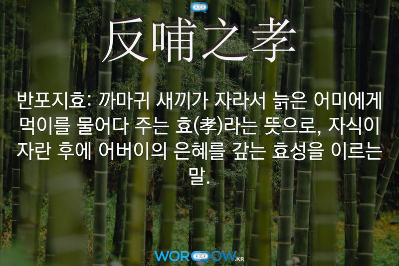 反哺之孝(반포지효): 까마귀 새끼가 자라서 늙은 어미에게 먹이를 물어다 주는 효(孝)라는 뜻으로, 자식이 자란 후에 어버이의 은혜를 갚는 효성을 이르는 말.