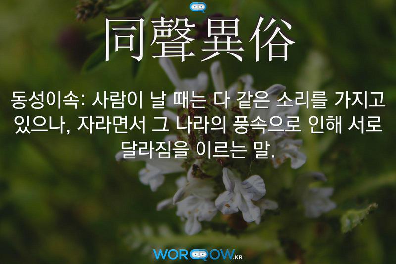 同聲異俗(동성이속): 사람이 날 때는 다 같은 소리를 가지고 있으나, 자라면서 그 나라의 풍속으로 인해 서로 달라짐을 이르는 말.