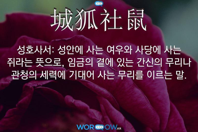 城狐社鼠(성호사서): 성안에 사는 여우와 사당에 사는 쥐라는 뜻으로, 임금의 곁에 있는 간신의 무리나 관청의 세력에 기대어 사는 무리를 이르는 말.