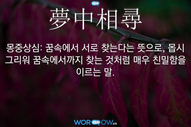 夢中相尋(몽중상심): 꿈속에서 서로 찾는다는 뜻으로, 몹시 그리워 꿈속에서까지 찾는 것처럼 매우 친밀함을 이르는 말.