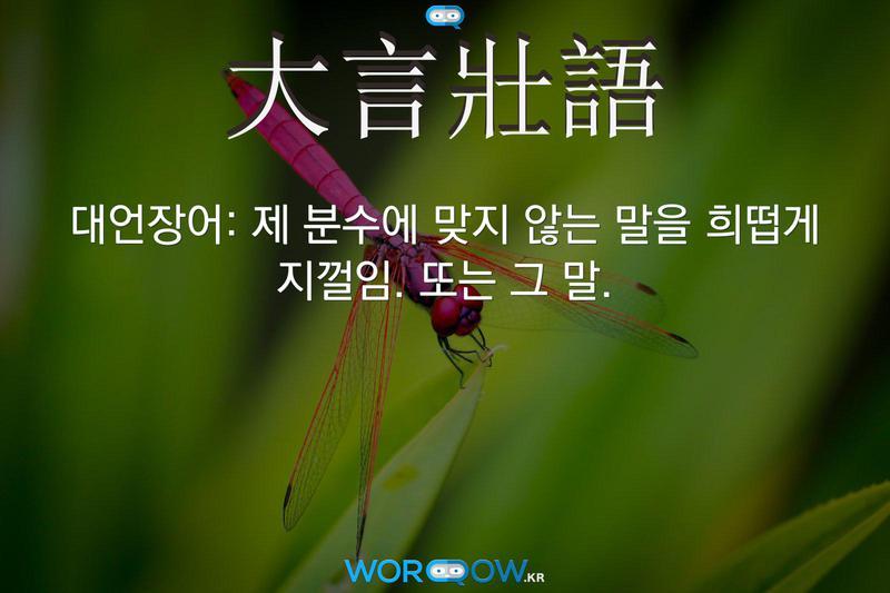 大言壯語(대언장어): 제 분수에 맞지 않는 말을 희떱게 지껄임. 또는 그 말.