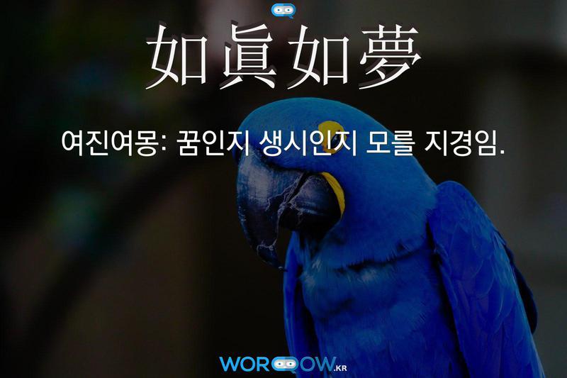 如眞如夢(여진여몽)의 의미: 꿈인지 생시인지 모를 지경임.