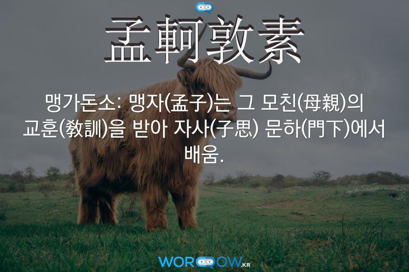 孟軻敦素(맹가돈소)의 의미: 맹자(孟子)는 그 모친(母親)의 교훈(敎訓)을 받아 자사(子思) 문하(門下)에서 배움.