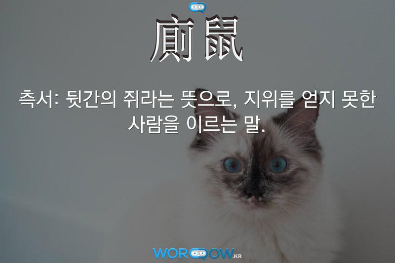 廁鼠(측서): 뒷간의 쥐라는 뜻으로, 지위를 얻지 못한 사람을 이르는 말.