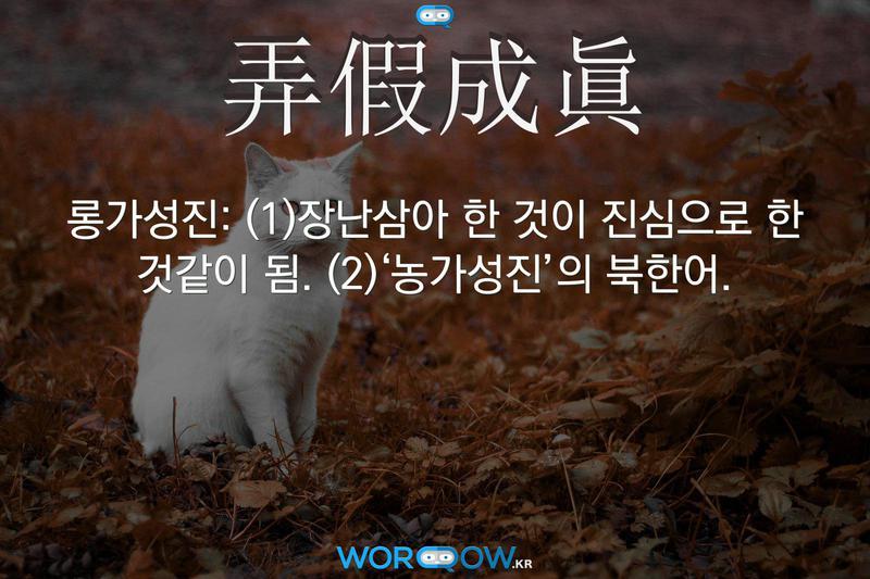 弄假成眞(롱가성진): (1)장난삼아 한 것이 진심으로 한 것같이 됨. (2)'농가성진'의 북한어.