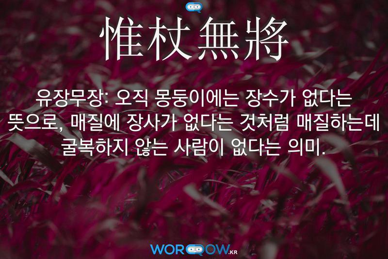惟杖無將(유장무장): 오직 몽둥이에는 장수가 없다는 뜻으로, 매질에 장사가 없다는 것처럼 매질하는데 굴복하지 않는 사람이 없다는 의미.