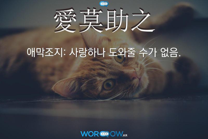 愛莫助之(애막조지): 사랑하나 도와줄 수가 없음.
