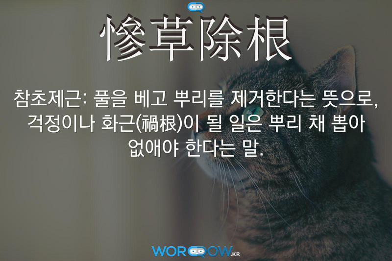 慘草除根(참초제근): 풀을 베고 뿌리를 제거한다는 뜻으로, 걱정이나 화근(禍根)이 될 일은 뿌리 채 뽑아 없애야 한다는 말.