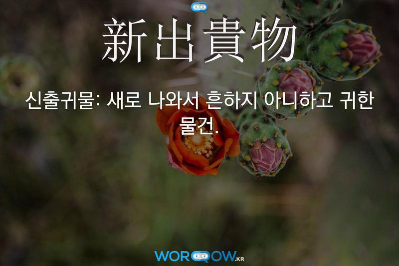 新出貴物(신출귀물): 새로 나와서 흔하지 아니하고 귀한 물건.