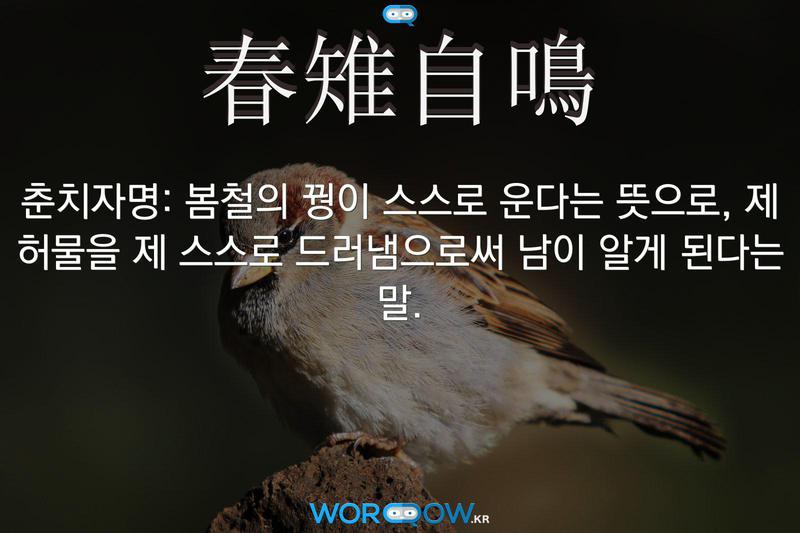 春雉自鳴(춘치자명): 봄철의 꿩이 스스로 운다는 뜻으로, 제 허물을 제 스스로 드러냄으로써 남이 알게 된다는 말.