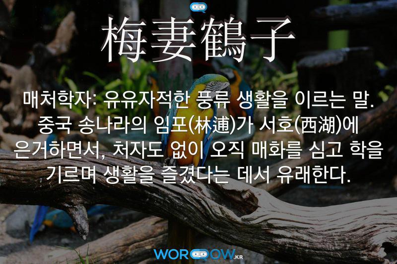 梅妻鶴子(매처학자): 유유자적한 풍류 생활을 이르는 말. 중국 송나라의 임포(林逋)가 서호(西湖)에 은거하면서, 처자도 없이 오직 매화를 심고 학을 기르며 생활을 즐겼다는 데서 유래한다.