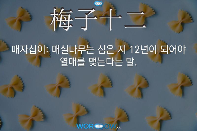 梅子十二(매자십이): 매실나무는 심은 지 12년이 되어야 열매를 맺는다는 말.