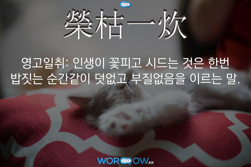 榮枯一炊(영고일취): 인생이 꽃피고 시드는 것은 한번 밥짓는 순간같이 덧없고 부질없음을 이르는 말.
