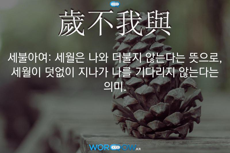 歲不我與(세불아여): 세월은 나와 더불지 않는다는 뜻으로, 세월이 덧없이 지나가 나를 기다리지 않는다는 의미.