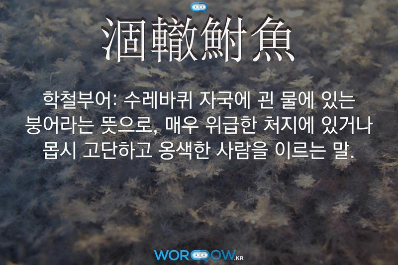 涸轍鮒魚(학철부어): 수레바퀴 자국에 괸 물에 있는 붕어라는 뜻으로, 매우 위급한 처지에 있거나 몹시 고단하고 옹색한 사람을 이르는 말.
