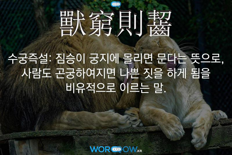 獸窮則齧(수궁즉설): 짐승이 궁지에 몰리면 문다는 뜻으로, 사람도 곤궁하여지면 나쁜 짓을 하게 됨을 비유적으로 이르는 말.