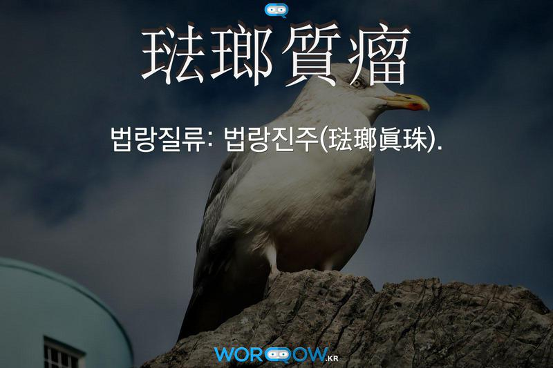 琺瑯質瘤(법랑질류)의 의미: 법랑진주(琺瑯眞珠).