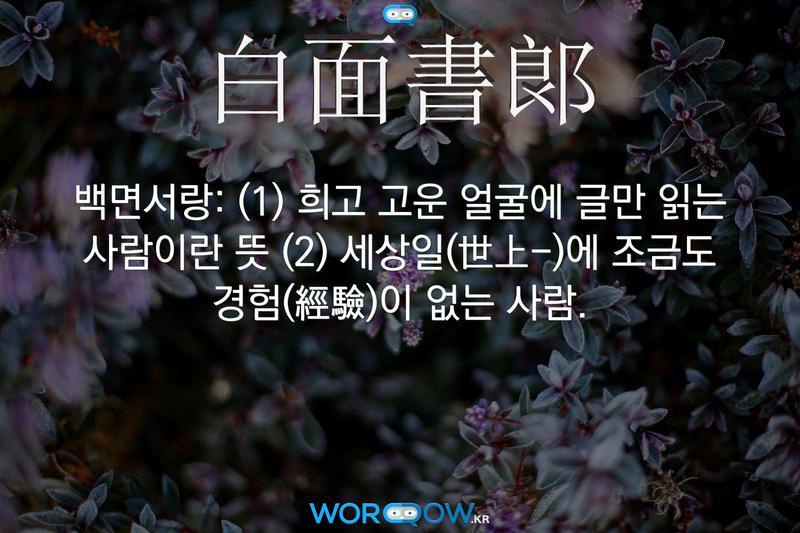 白面書郞(백면서랑): (1) 희고 고운 얼굴에 글만 읽는 사람이란 뜻 (2) 세상일(世上-)에 조금도 경험(經驗)이 없는 사람.