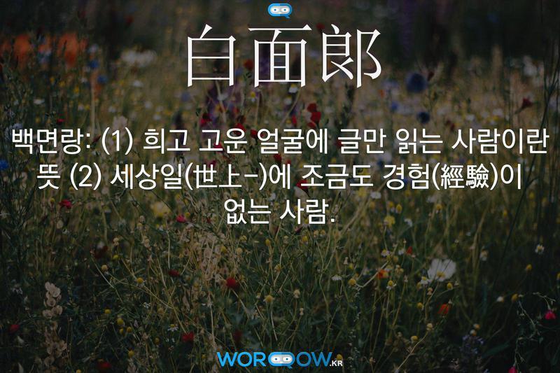 白面郞(백면랑): (1) 희고 고운 얼굴에 글만 읽는 사람이란 뜻 (2) 세상일(世上-)에 조금도 경험(經驗)이 없는 사람.