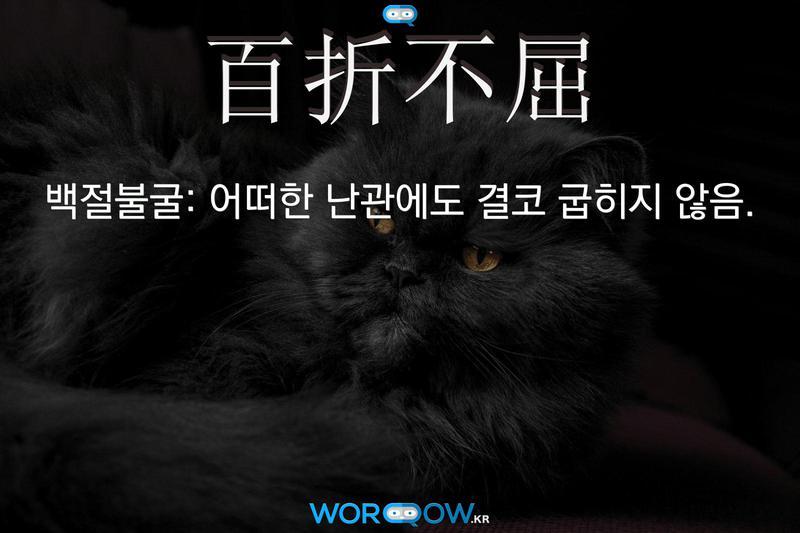 百折不屈(백절불굴): 어떠한 난관에도 결코 굽히지 않음.