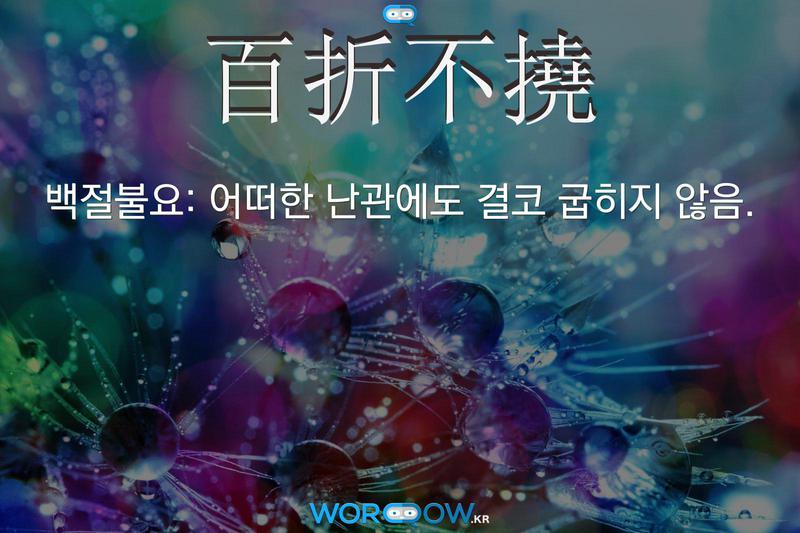 百折不撓(백절불요): 어떠한 난관에도 결코 굽히지 않음.