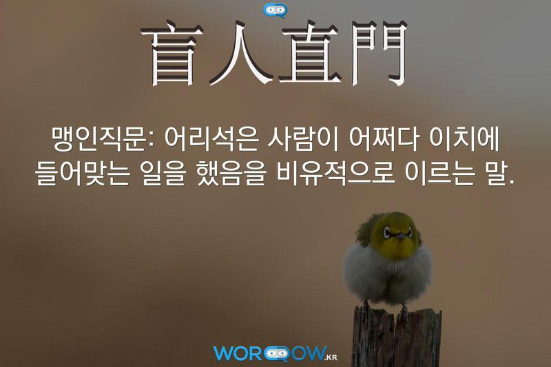 盲人直門(맹인직문): 어리석은 사람이 어쩌다 이치에 들어맞는 일을 했음을 비유적으로 이르는 말.