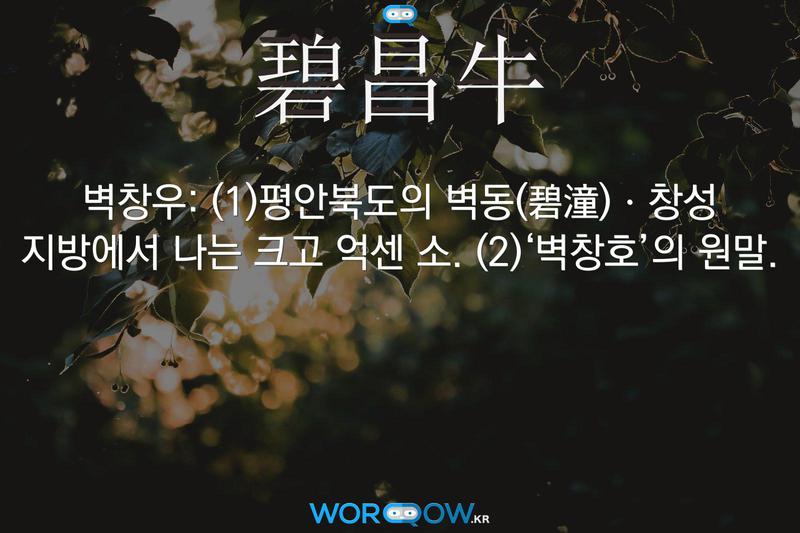 碧昌牛(벽창우): (1)평안북도의 벽동(碧潼)ㆍ창성 지방에서 나는 크고 억센 소. (2)'벽창호'의 원말.