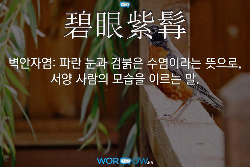 碧眼紫髥(벽안자염): 파란 눈과 검붉은 수염이라는 뜻으로, 서양 사람의 모습을 이르는 말.