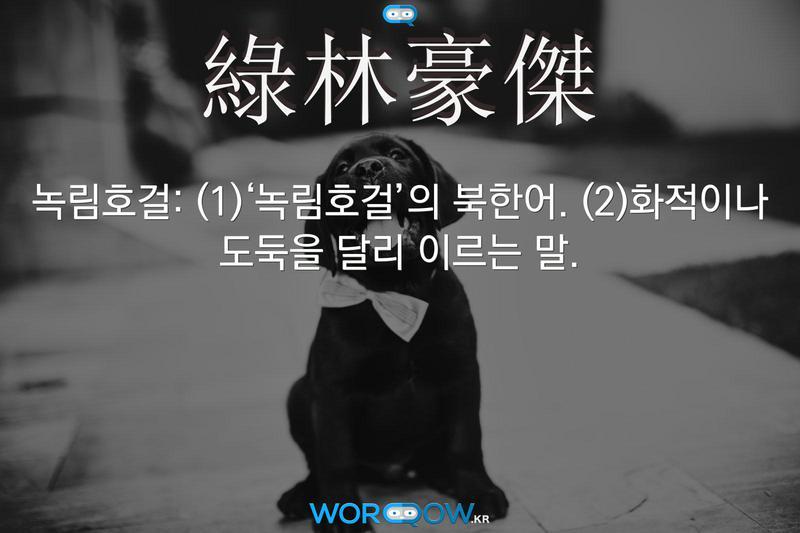 綠林豪傑(녹림호걸): (1)'녹림호걸'의 북한어. (2)화적이나 도둑을 달리 이르는 말.