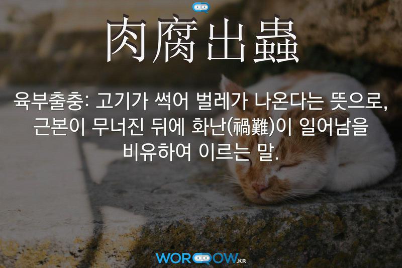肉腐出蟲(육부출충): 고기가 썩어 벌레가 나온다는 뜻으로, 근본이 무너진 뒤에 화난(禍難)이 일어남을 비유하여 이르는 말.