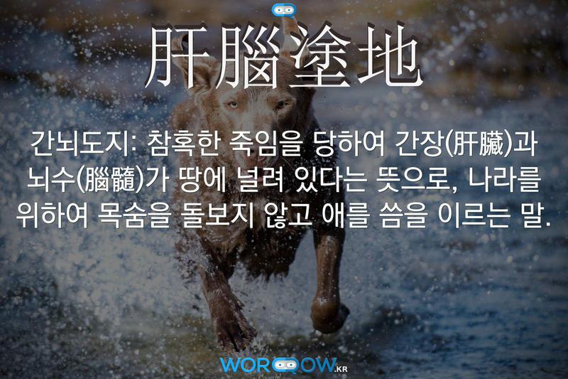 肝腦塗地(간뇌도지): 참혹한 죽임을 당하여 간장(肝臟)과 뇌수(腦髓)가 땅에 널려 있다는 뜻으로, 나라를 위하여 목숨을 돌보지 않고 애를 씀을 이르는 말.