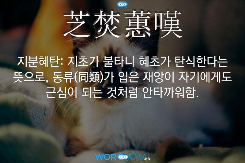 芝焚蕙嘆(지분혜탄): 지초가 불타니 혜초가 탄식한다는 뜻으로, 동류(同類)가 입은 재앙이 자기에게도 근심이 되는 것처럼 안타까워함.