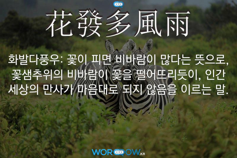 花發多風雨(화발다풍우): 꽃이 피면 비바람이 많다는 뜻으로, 꽃샘추위의 비바람이 꽃을 떨어뜨리듯이, 인간 세상의 만사가 마음대로 되지 않음을 이르는 말.
