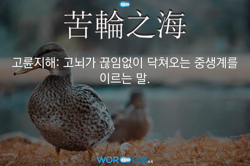 苦輪之海(고륜지해): 고뇌가 끊임없이 닥쳐오는 중생계를 이르는 말.